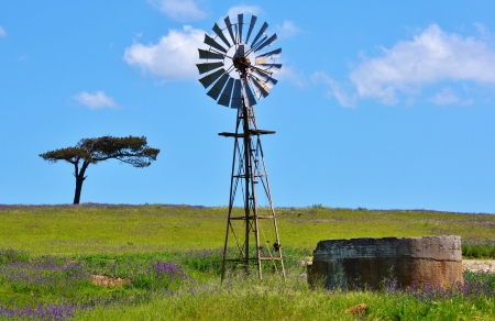 Landscape with windmill water pump on a farm swartland south africa photo