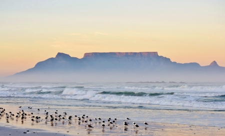 Landscape with beach and Table mountain at sunrise photo