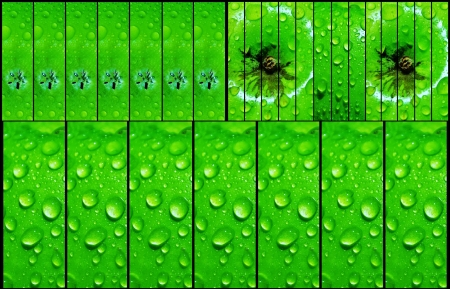 Collage of water droplets on green apple photo