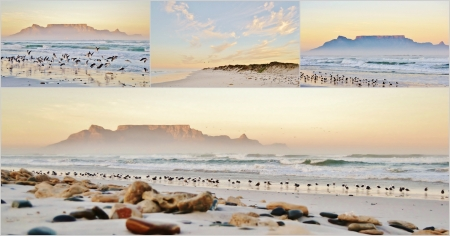Collage of Landscapes with beach andTable mountain at sunrise photo