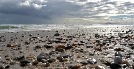 quarz: Close up of beach pebbles after rain