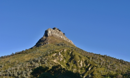 Landscape with Lion s Head in Cape Town photo