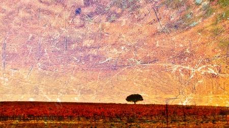 秋の色ひとしきり風景し、木