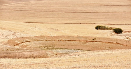 the water hole: Landscape with dried up water hole on Farm land