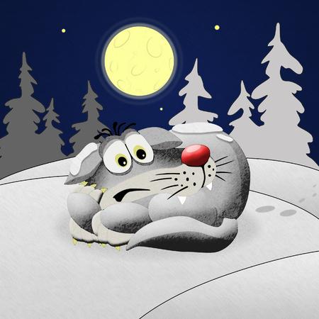 Illustration of wolf