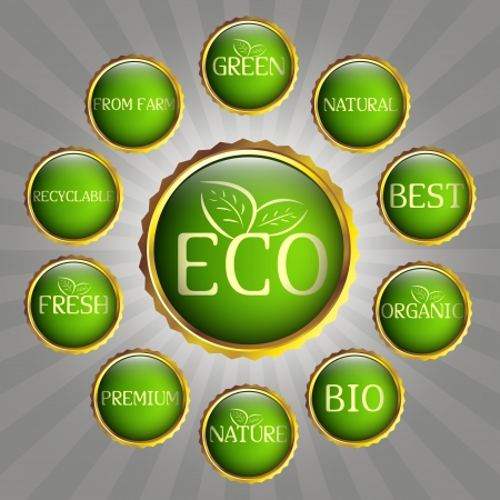 Set of green and gold badges  Eco, green and natural theme Stock Vector - 14453751