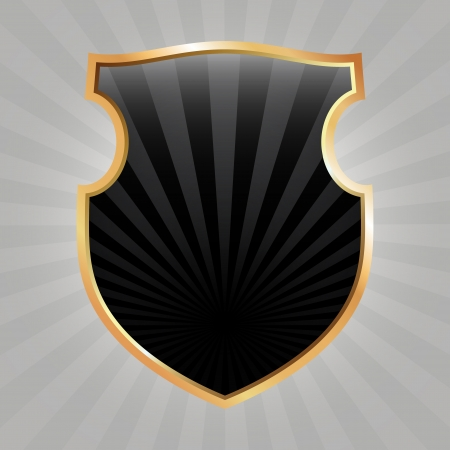 Black shield with rays, based on heraldic form Vector