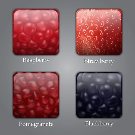 Buttons with raspberry, strawberry, pomegranate textures,  highly detailed , gradient mesh Vector