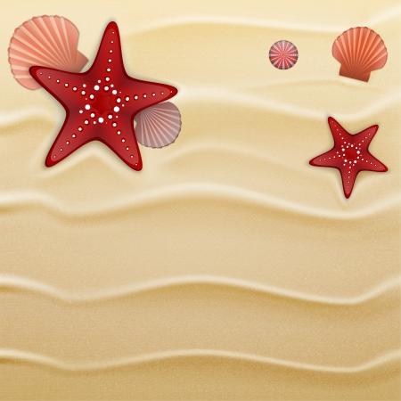 petoncle: �toiles de mer, coquilles d'oursins et de coquilles de p�toncles sur le sable. Illustration contient filet de d�grad�