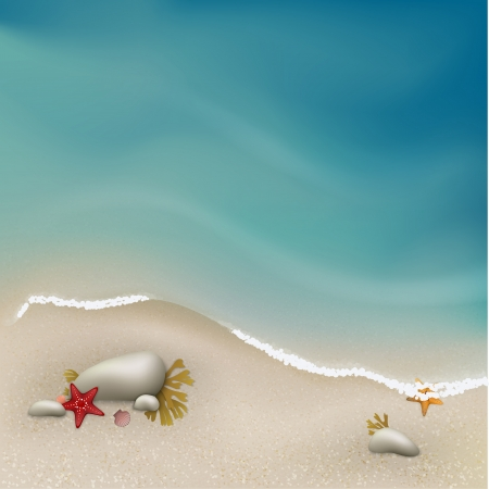 coastlines: Seaside view with rocks, sea grass and starfishes.  Illustration contains gradient mesh