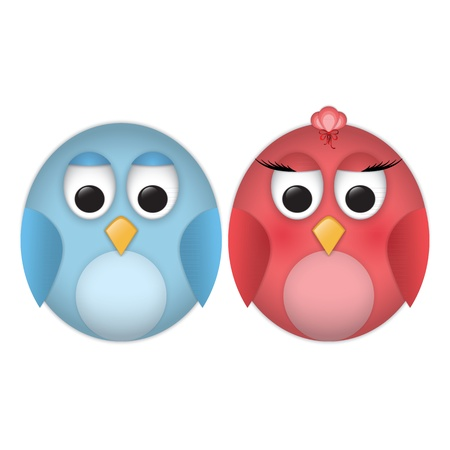Pair of cartoon funny birds Vector