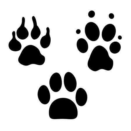 huellas de perro: Colecci�n huellas de perro