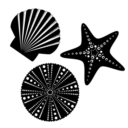 clam illustration: Sea life silhouettes set, starfish, scallop shell, sea urchin.