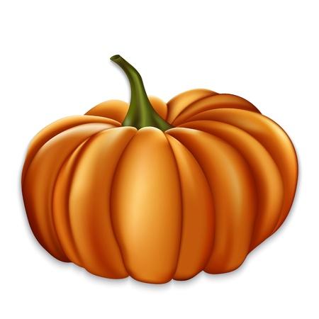 stocky: Orange vector pumpkin. Illustration contains gradient mesh Illustration