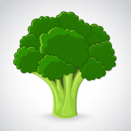 Atristic hand drawn illustration of broccoli