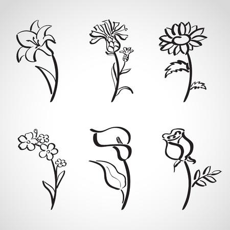 lirio blanco: Estilo de tinta dibujado a mano conjunto de dibujos - flores de verano
