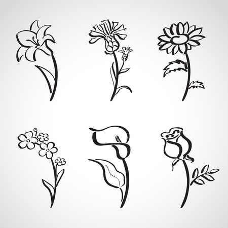 lily flowers collection: Ink style hand drawn sketch set  - summer flowers