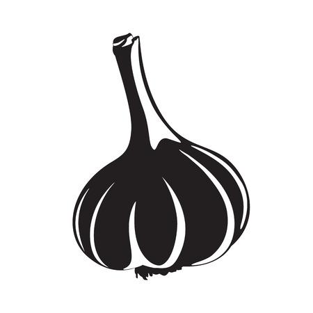 clove plant: Graphic garlic silhouette, black and white Illustration