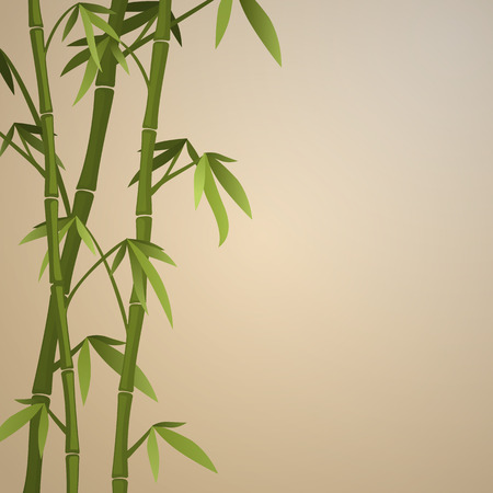 Background with bamboo stems. Color version Vector