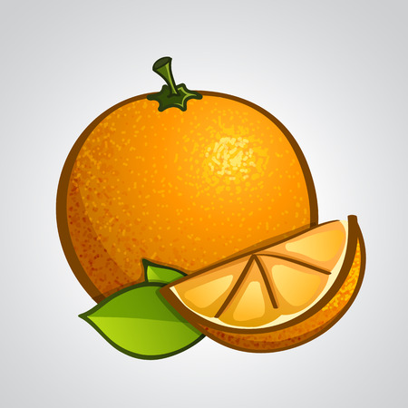 Vector artistic fruits - orange with leaves