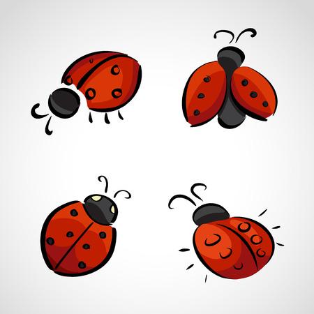 lady fly: Hand drawn icons set - ladybird (ladybug)