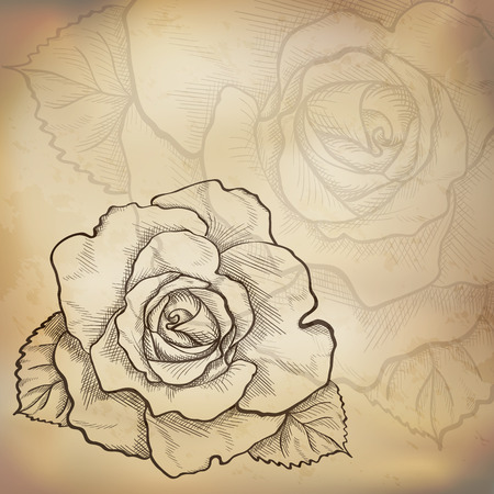 Sketch  rose background, hand drawn, ink style Vector