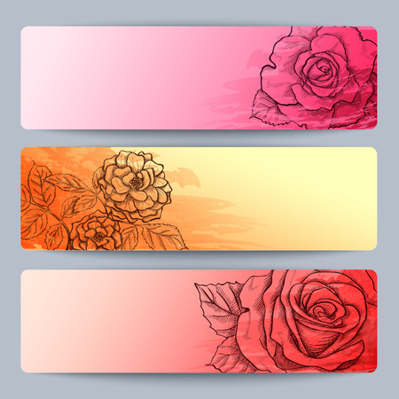rosaceae: Floral banners with hand drawn roses  Illustration