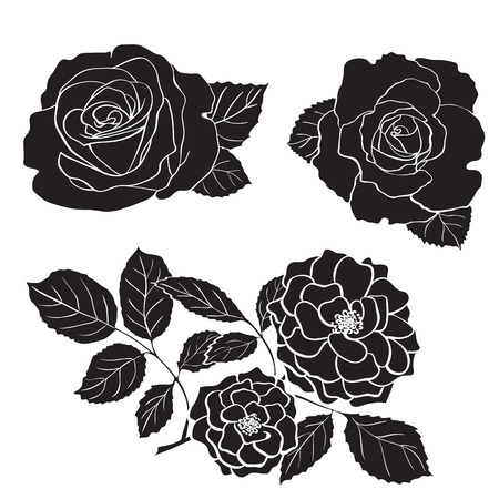 rosaceae: Rose silhouettes, hand drawn artistic vector