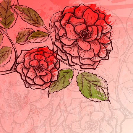rosaceae: Sketch rose branch, hand drawn, ink style with paint strokes imitation