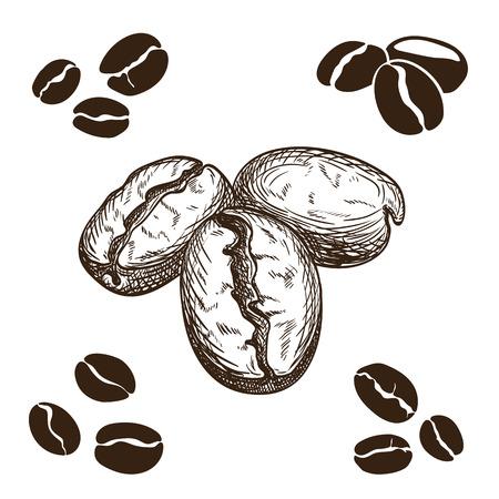 chicchi di caff�: Silhouette e disegnati a mano i chicchi di caff�.