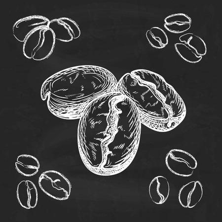 frijoles: Silueta dibujados a mano los granos de caf� sobre fondo de pizarra