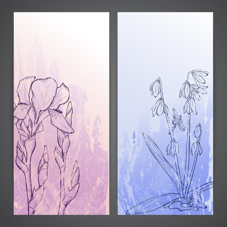 flayers: Flayers with flowers - scilla and iris. ink style drawing Illustration