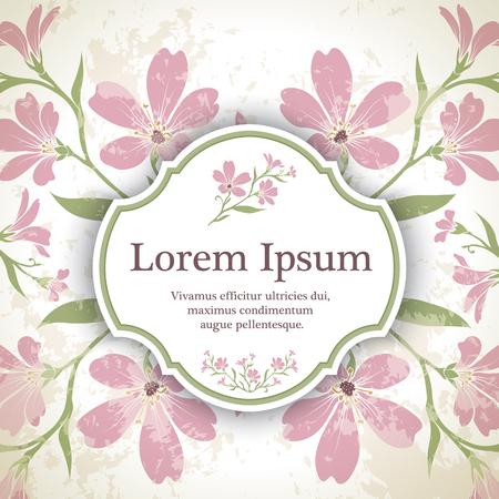cerastium tomentosum: Background with chickweed (tomentosum) graphic flowers.