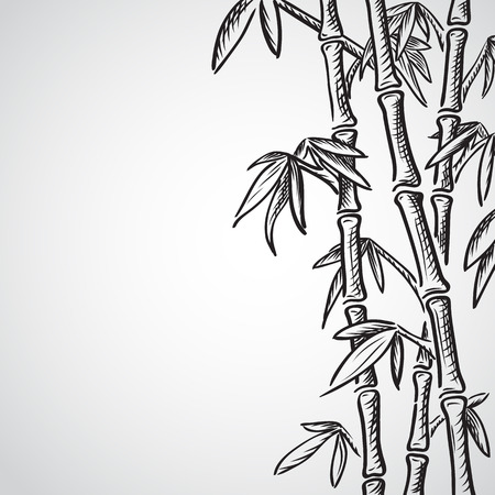 drawing trees: Background with bamboo stems. Ink sketch style