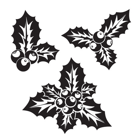 ilex: Ilex aquifolium decor silhouette, also known Christmas holly or European holly. Illustration
