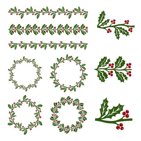 ilex: Ilex aquifolium decor, also known Christmas holly or European holly