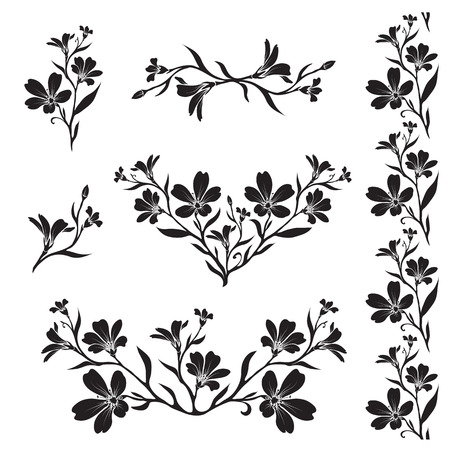 cerastium tomentosum: Chickweed (Tomentosum cerastium) graphic flower silhouettes