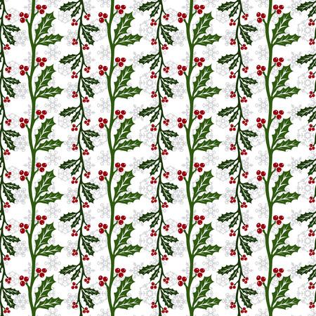 ilex: Ilex aquifolium seamless pattern, also known Christmas holly or European holly