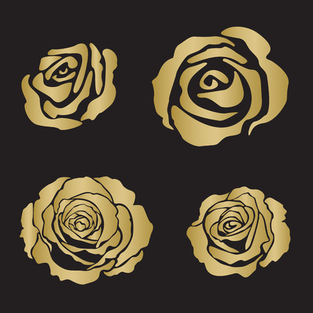 rosaceae: Silhouette rose opened flowers, hand drawn vector, gold color on black background