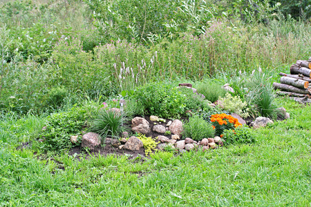 Rock garden with stones, tagetes, vinca, origano and thyme and uncultivated field on background Stock Photo