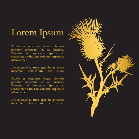 Decorative vector thistle (Carduus acanthoides) silhouette, template for banner, invitation or background 일러스트