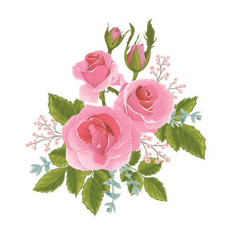 English  pink rose graphic flowers. For wedding invitation or greeting card. David Austin rose Illustration