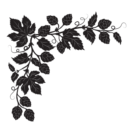 Hops cones and flowers with leaves, hand drawn vector silhouette corner Vettoriali