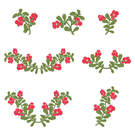 Vaccinium vitis-idaea (lingonberry or cowberry) silhouette branches. Hand drawn vector sketch