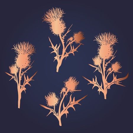 Decorative vector thistle (Carduus acanthoides) silhouette set Иллюстрация