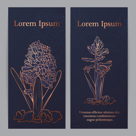 Hand drawn Garden hyacinth (Hyacinthus orientalis), vector sketch, copper ink drawing imitation