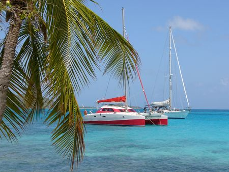 nautic: Catamaran