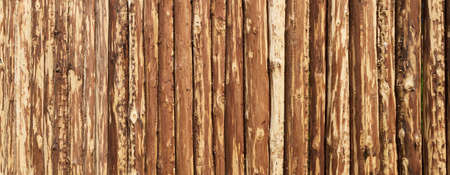 Wooden surface for natural background. Fence made of tree trunks.