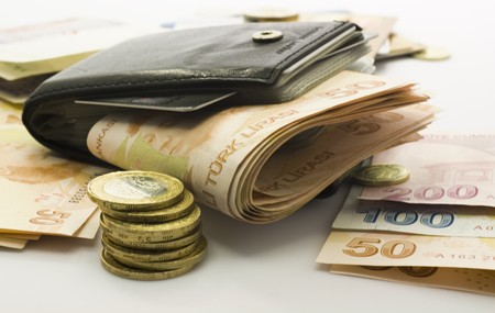 Money in the wallet and coins