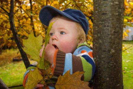 munching on leaves